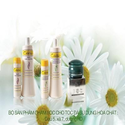Bộ Chihtsai dành cho tóc ép,đã sử dụng hóa chất - Mỹ